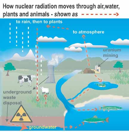 env&radiation