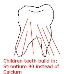 dagram-strontium-in-teeth