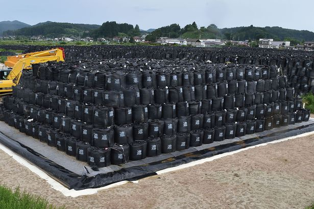 Decontamination-on-a-massive-scale-as-radioactive-soil-is-bagged-up-into-large-black-bags-there-are-problems-of-what-to