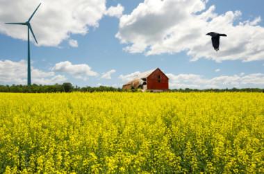 Ontario wind turbine. Image via Shutterstock