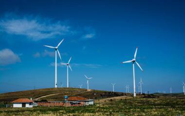 Brazilian wind farm. Author: Carla Wosniak. License: Creative Commons, Attribution 2.0 Generic