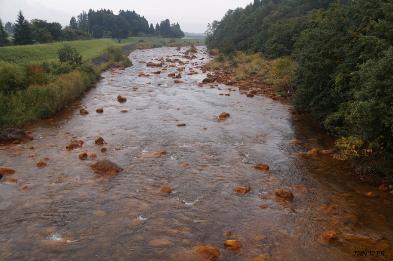 Copyright_2015_DNDJR_Fukushima_Pref_-_the_Acidic_Nagasegawa_River-393x261