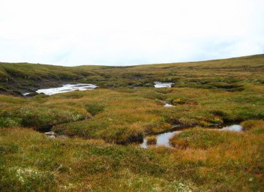 A boggy plateau west of Carn a' Bhacain. Photo by Richard Webb. CC BY-SA 2.0. Wikimedia Commons.
