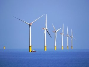 The Walney wind farm, in the Irish Sea. Credit: Wikimedia