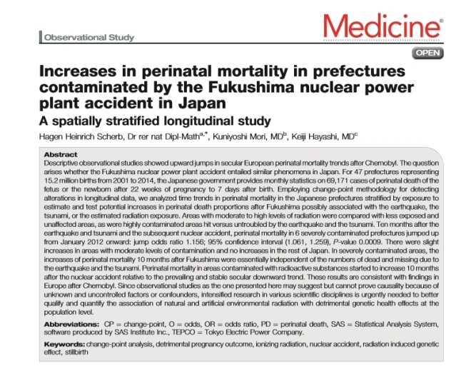 3 oct 2016 perinatal mortality.jpg