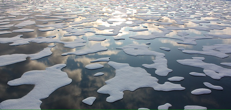 Image result for climate news disappears