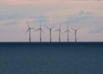 Offshore wind farm (MorgueFile image)