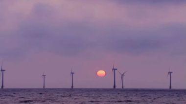 Offshore wind farm at sunrise (Reuters file image)