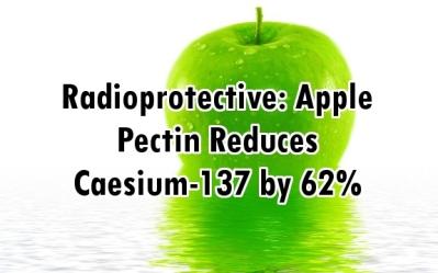 apple_radioprotective