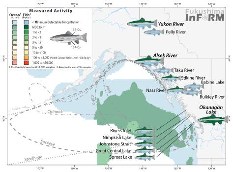 inform-salmon-2015-river_nov 15 2016.png
