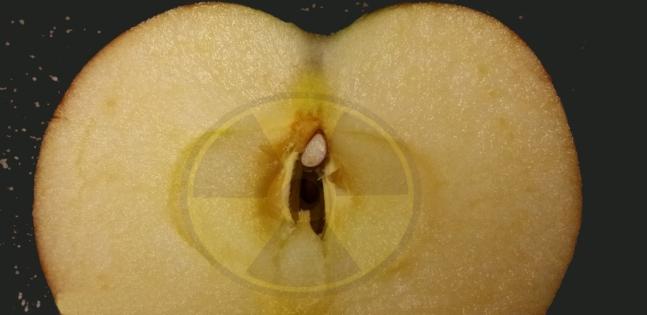 radiation-protection-with-apple-pectin-1024w.jpg