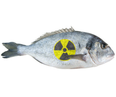 radioactive_fukushima_fish_333