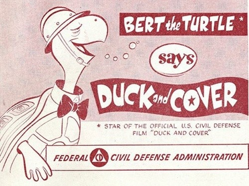 duck_cover_turtle