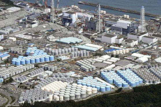 Fukushia 2019