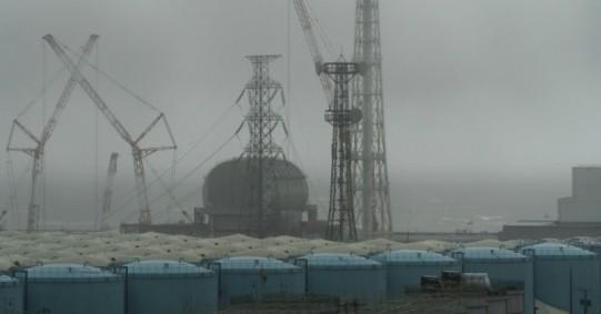 fukushima-embassy-officials-dump-water-ocean