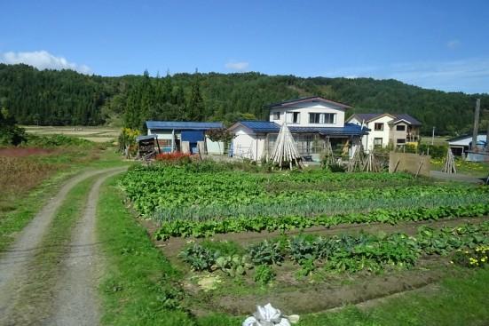 fukushima-farm